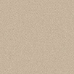 Solid Antique Beige